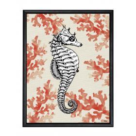 Obraz s rámom - morský koník - veľký
